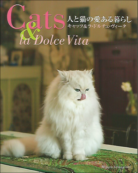 2010_Cat
